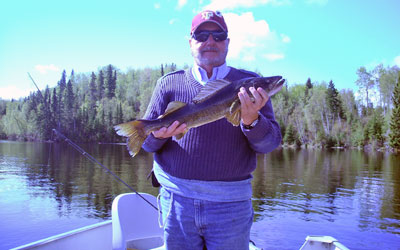 <p>A 6 lb walleye caught near Black Bear Lodge in Red Lake, Ontario</p>